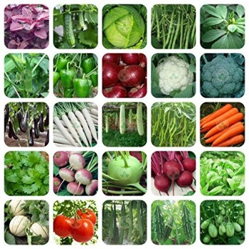 Ofo Only For Organic 25 variety of vegetable seeds with 25 grow bags
