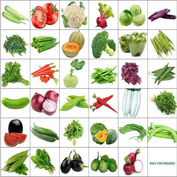 35 Variety of Vegetable Seeds with Instruction Manual